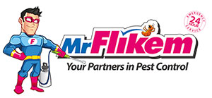 Mr Flikem