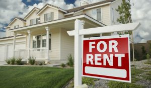 rental property pest control sydney