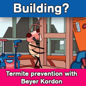 termite protection sydney for buildings